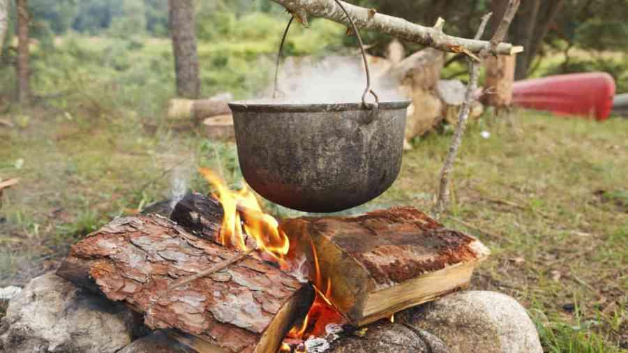 Stone Soup Days
